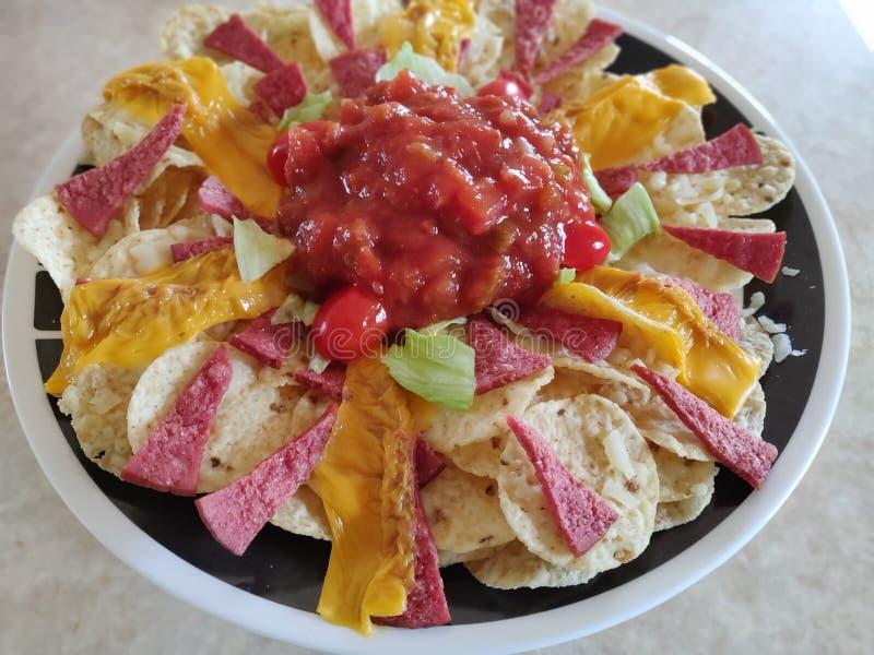 Nachos en Salsa-Schotel stock fotografie