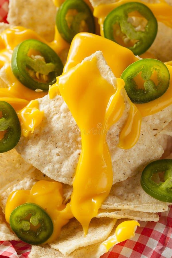 Nachos faits maison avec du fromage de cheddar image stock