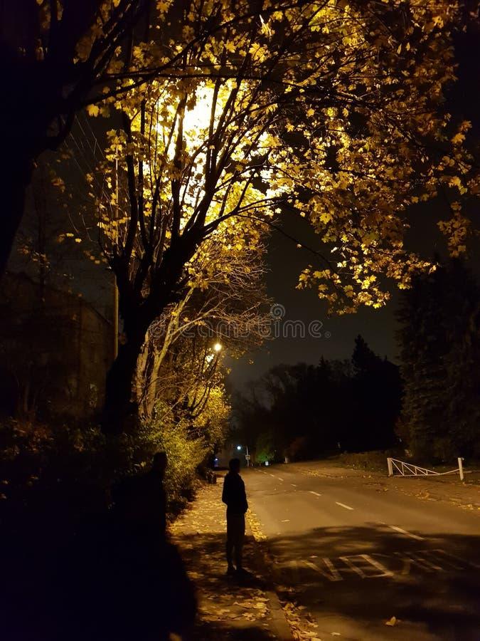 nacht stockbilder