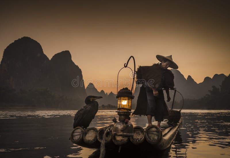 Nacht het fshing met aalscholvers op de rivier Lijiang stock foto's