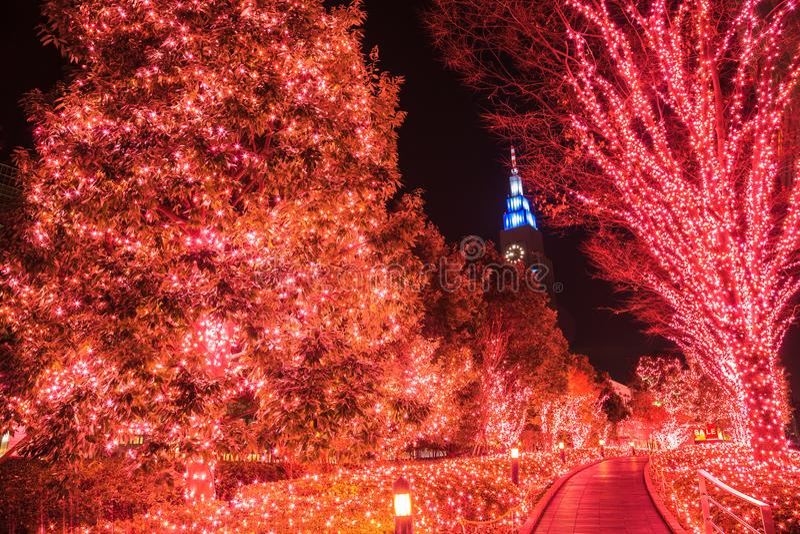 Nacht Lichte Decoratie, de Winterverlichting in Tokyo bij Shinjuku-district, Japan royalty-vrije stock afbeeldingen