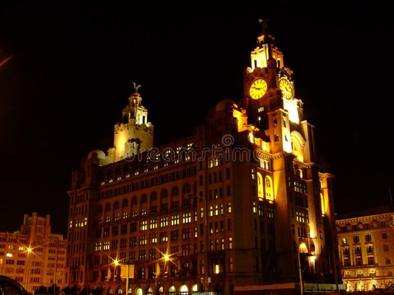 Nacht Liverpool royalty-vrije stock fotografie