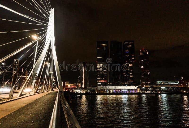 Nacht-Rotterdam-Skyline mit Erasmus Bridge Kop van Zuid-Nachbarschaft, die Niederlande stockbild