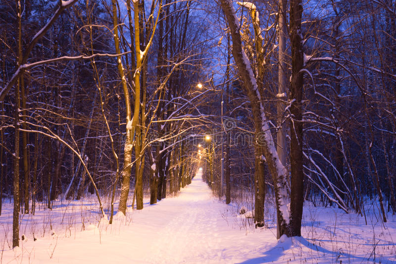 Nacht snow-covered weg stock afbeelding