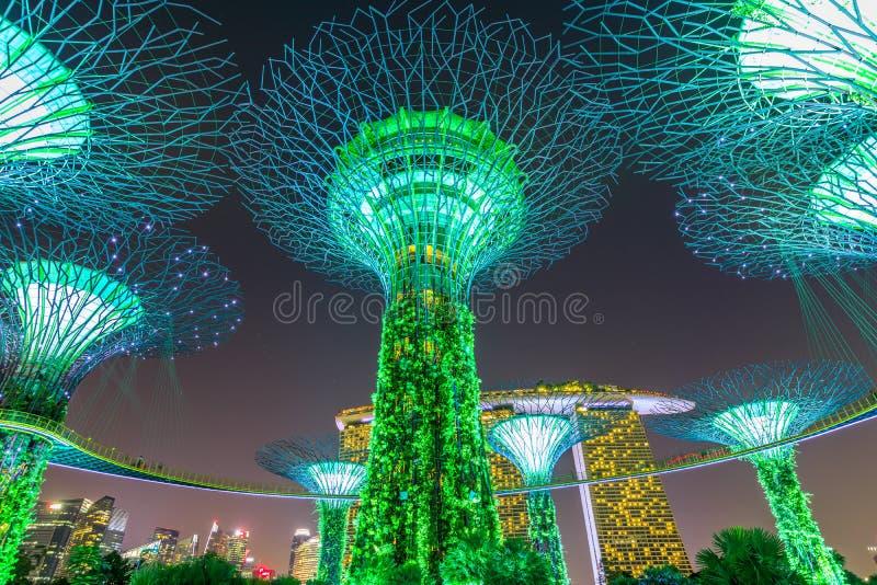Nacht Supertree Singapur stockfotos