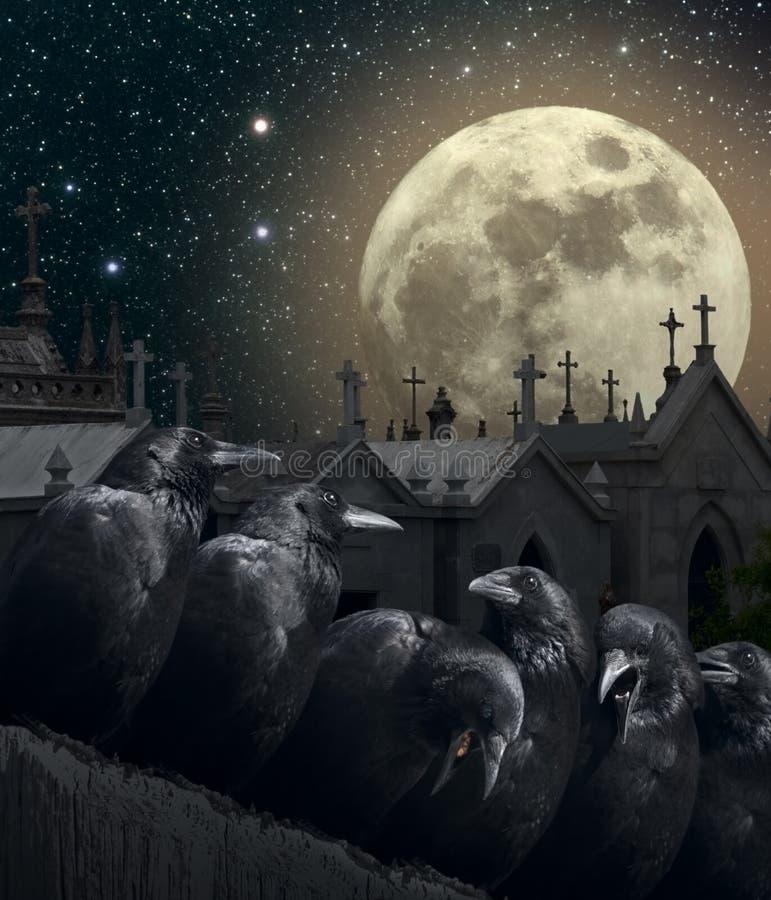 Nacht van de kraaien