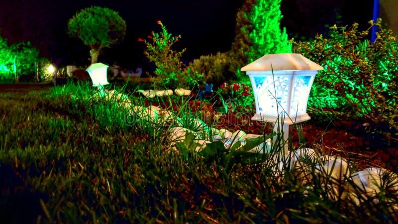 Nacht wenig Konzertgarten des blauen Grüns der Lampe lizenzfreies stockfoto