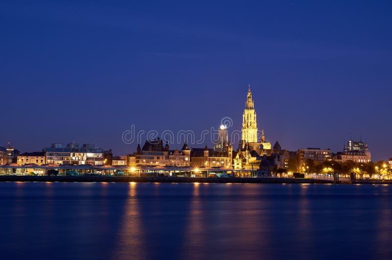 Nachtansicht über Stadt von Antwerpen lizenzfreie stockfotos