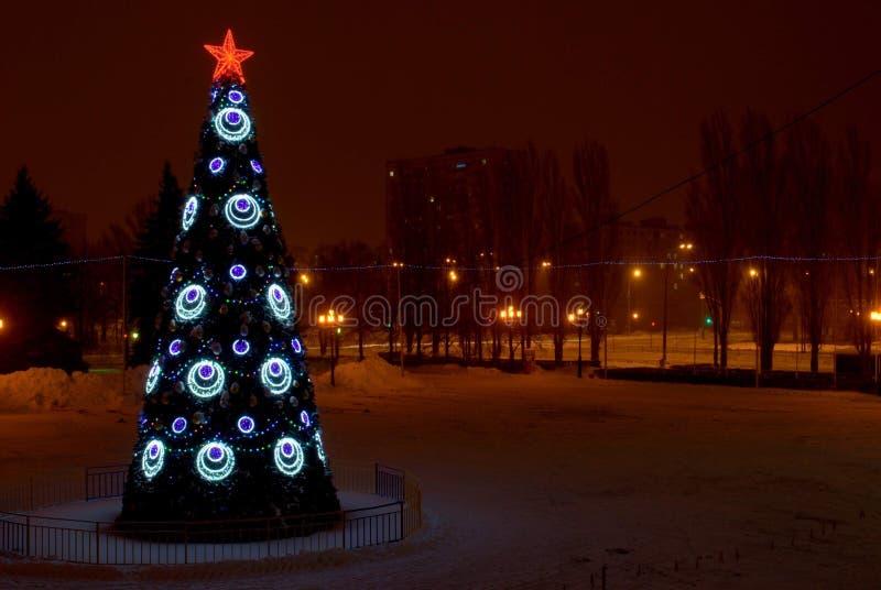 Nachtansicht eines Weihnachtsbaums nahe dem Palast des Sports lizenzfreie stockbilder