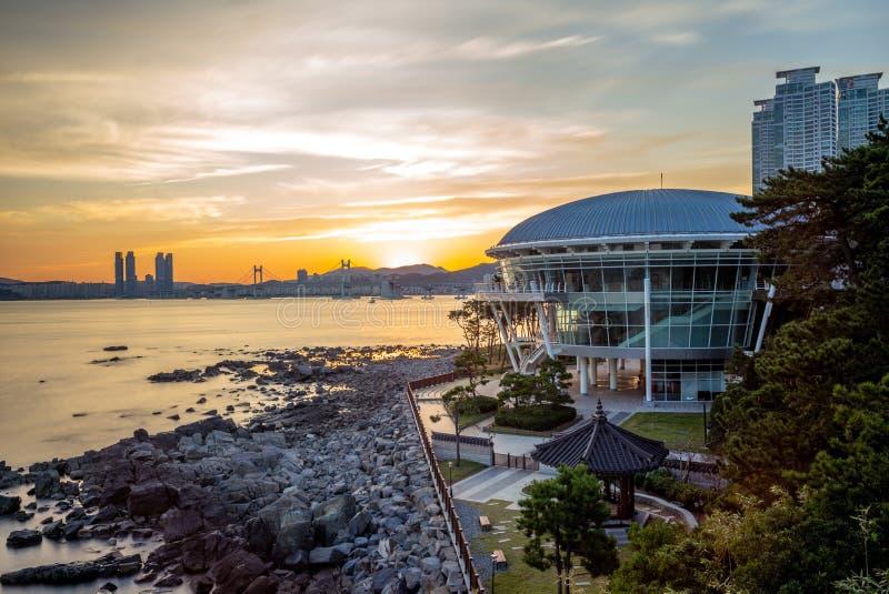 Nachtansicht von Dongbaekseom-Insel in Busan, Korea lizenzfreie stockfotografie