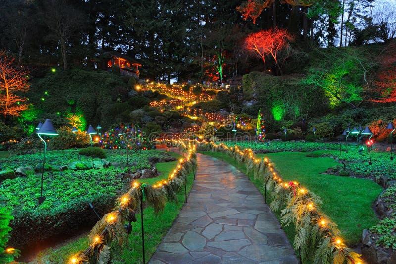 Nachtbeleuchtung des Gartens lizenzfreie stockfotografie