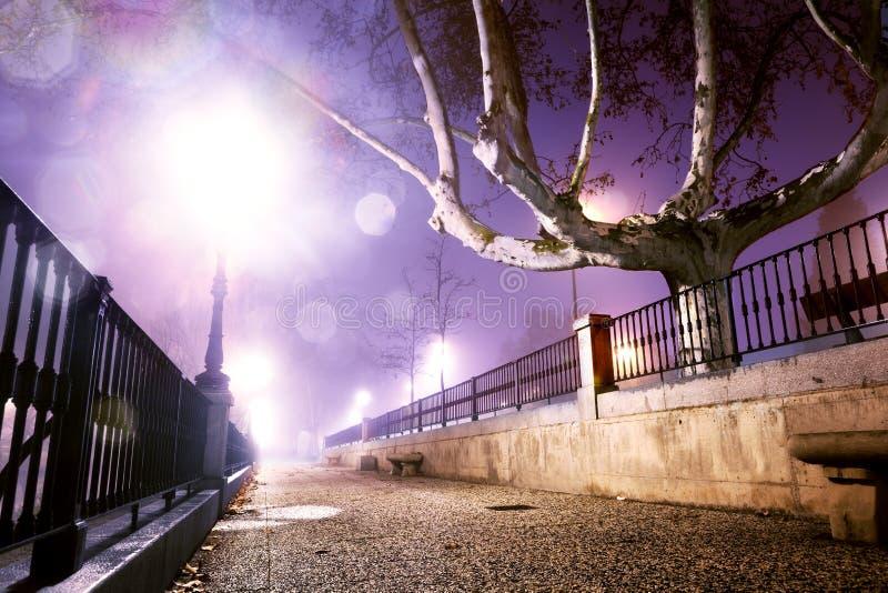Nachtcityscape, Zaal Het stedelijke leven Lantaarnpaal en muur stock fotografie