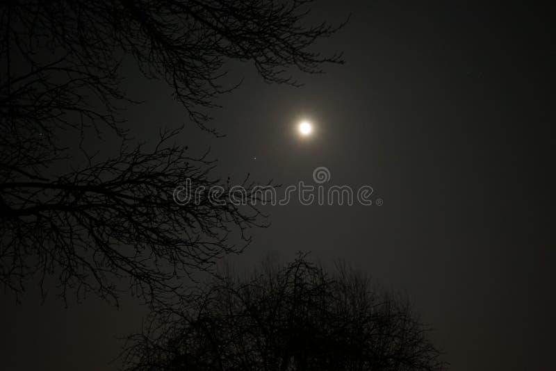Nachthemel aan de kant van het land Supermoon royalty-vrije stock afbeelding