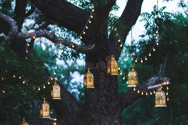 Nachthochzeitszeremonie mit Weinleselampen auf Baum stockbild
