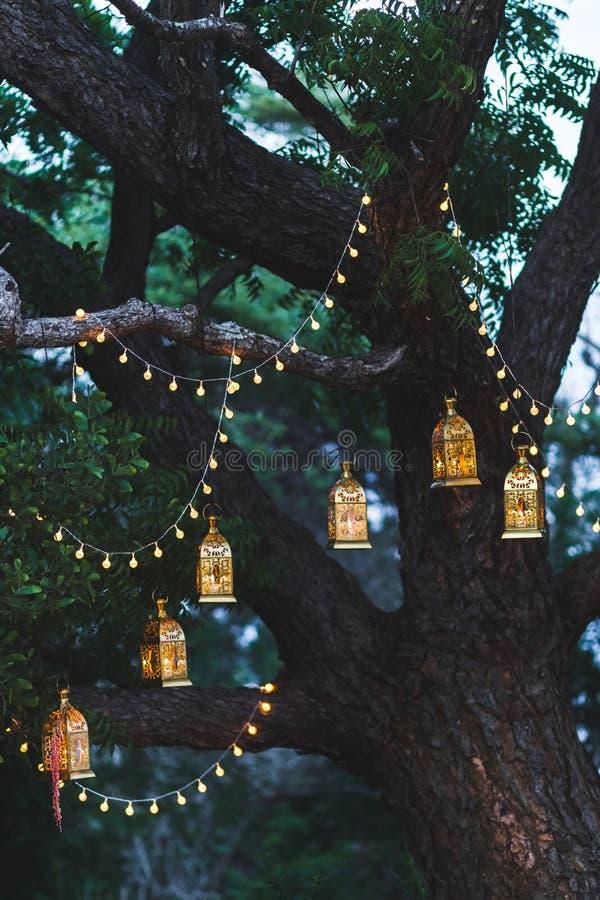 Nachthochzeitszeremonie mit Weinleselampen auf Baum lizenzfreies stockbild