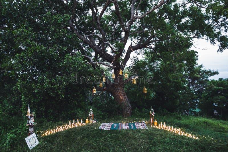 Nachthochzeitszeremonie mit Weinleselampen auf Baum lizenzfreies stockfoto