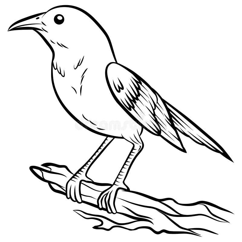 Nachtigall, die auf einer Niederlassung sitzt stock abbildung