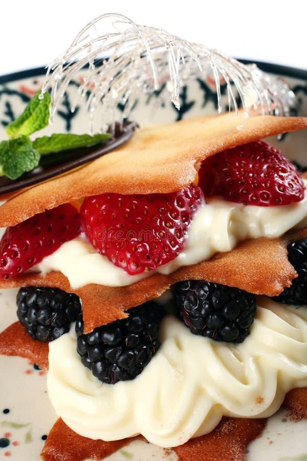 Nachtisch mit Frucht lizenzfreies stockfoto