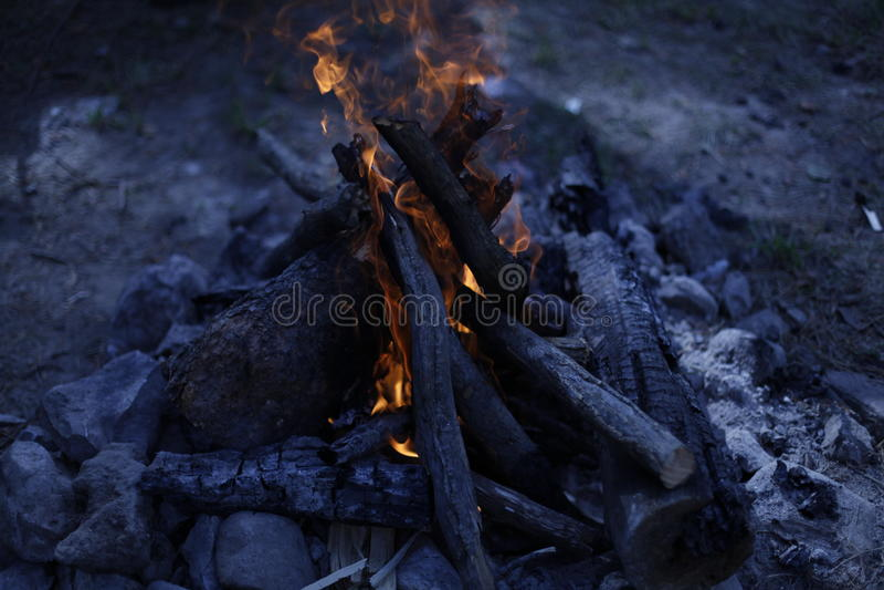 Nachtkampvuur stock afbeeldingen