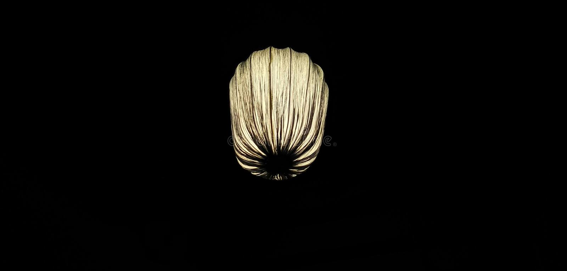 Nachtkerzenballon stockbilder