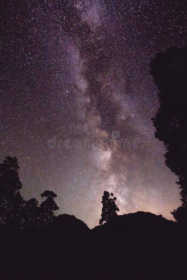 Nachtlandschap met Melkweg en sommige bomen in de bergen royalty-vrije stock afbeeldingen