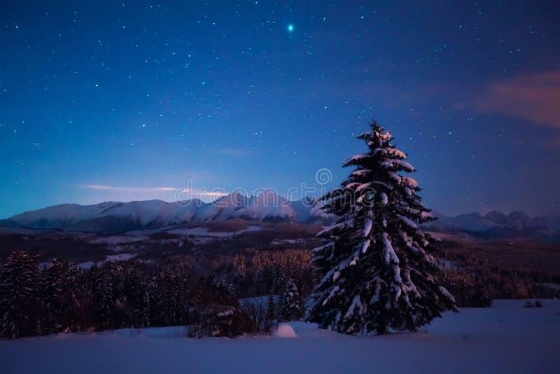 Nachtlandschap met sterrige hemel royalty-vrije stock fotografie