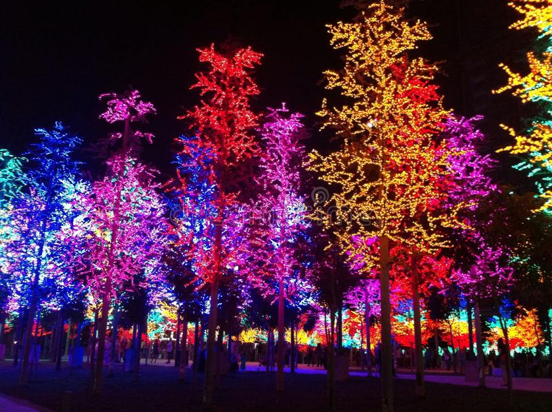 Nachtlicht-Show stockfoto