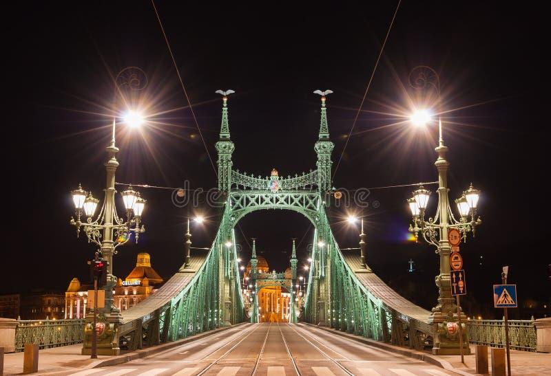 Nachtmening van Liberty Bridge of Vrijheidsbrug in Boedapest, Hongarije stock afbeeldingen