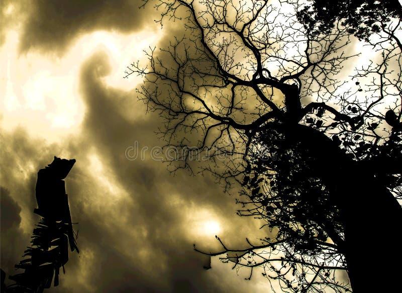 Nachtmerrieboom royalty-vrije stock foto