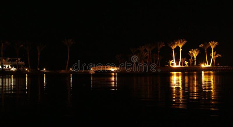 Nachtpanorama met mening van verlichte palmen op zeekust van Hurghada Tropische toevlucht royalty-vrije stock foto