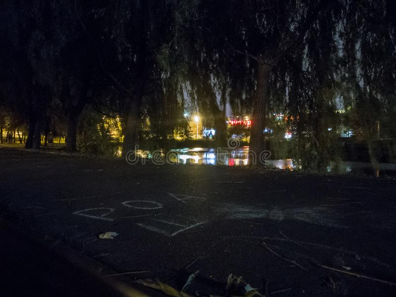 Nachtpark mit einem Teich Landschaft mit glühende Laternen und Baumaste lizenzfreies stockbild