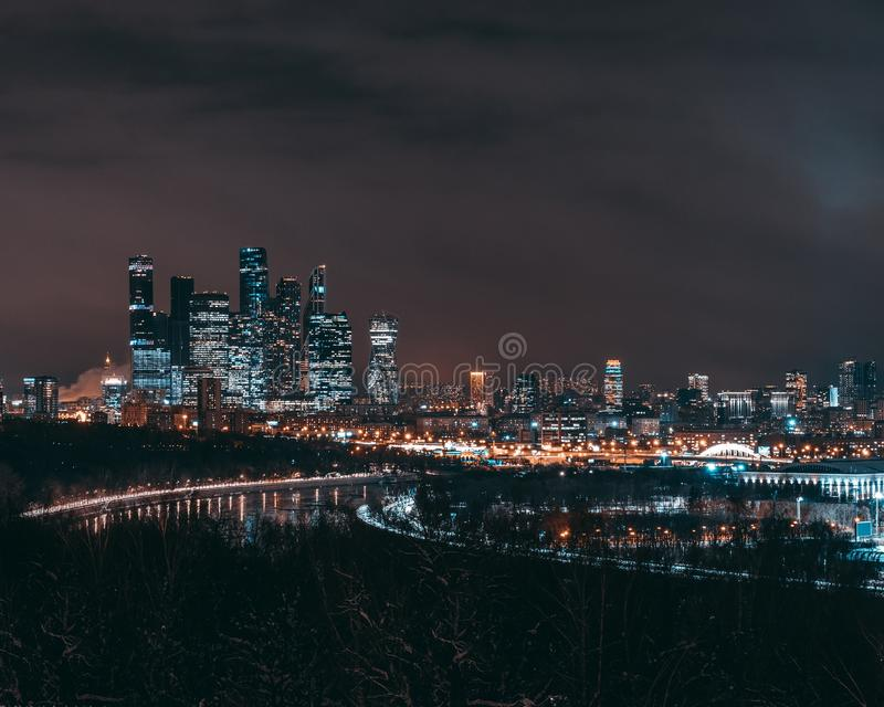 Nachtschoonheid stock afbeelding