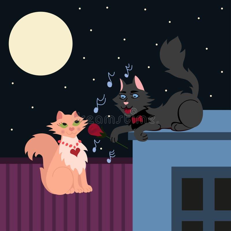 Nachtserenade, zwei liebevolle Katzen, Katze in der Liebe singt die Serenade lizenzfreie abbildung