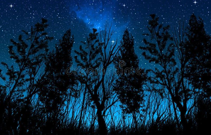 Nachtsternenklarer Himmel mit einer Milchstraße und Sternen, in den Vordergrundbäumen und in den Büschen der Waldfläche stockfotos