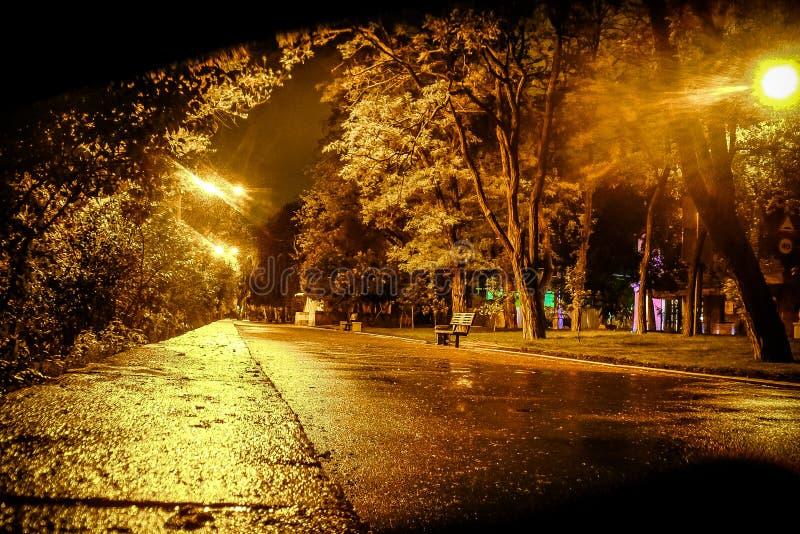 Nachtstraat na regen stock foto