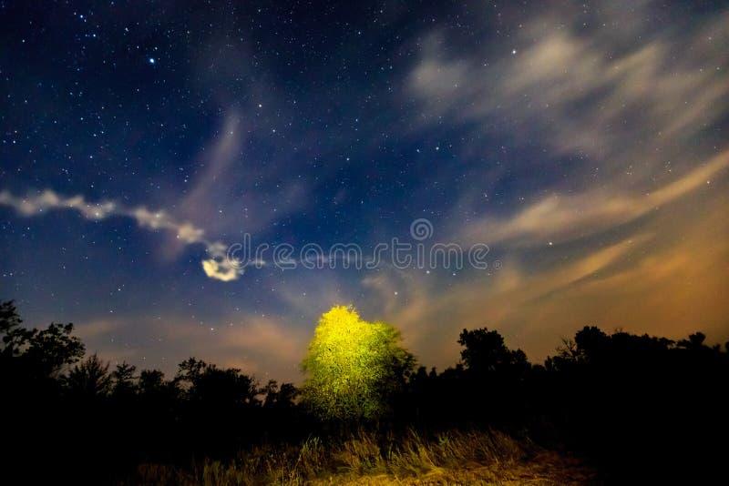 Nachtszene in der Steppe lizenzfreies stockfoto