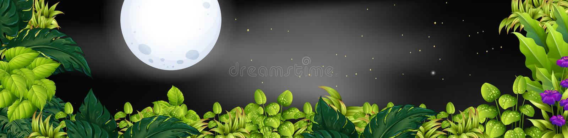 Nachtszene mit fullmoon über dem Garten stock abbildung