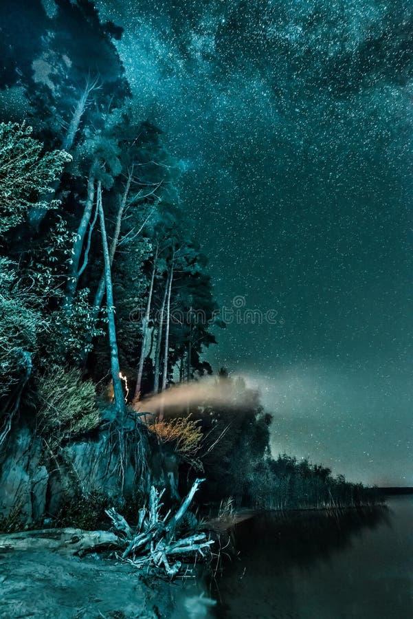 Nachtwaldlandschaft mit Sternen stockbilder