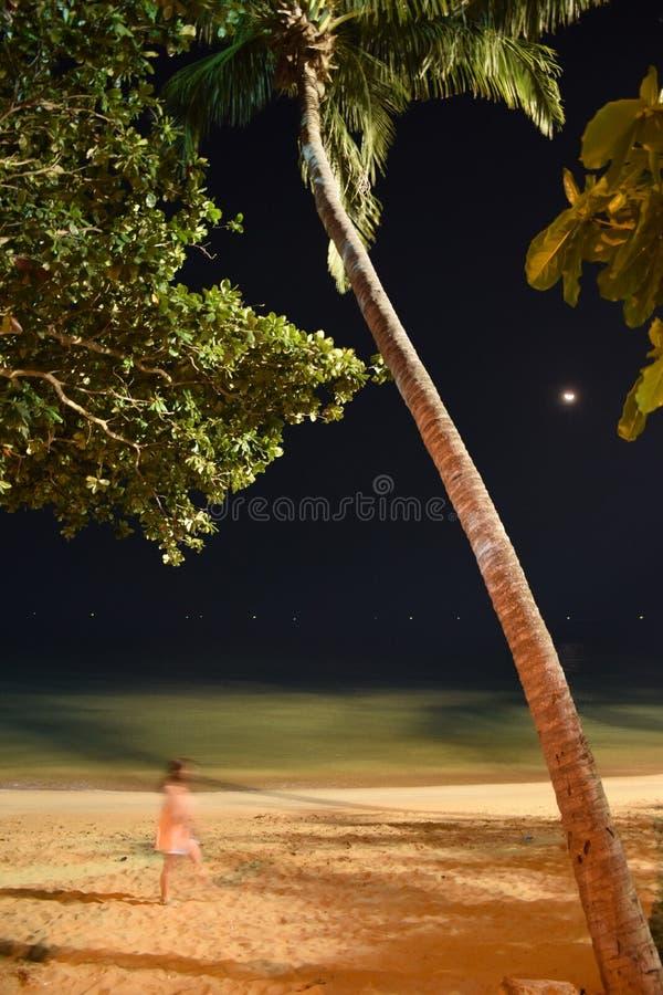 Nachtweg lizenzfreie stockfotografie