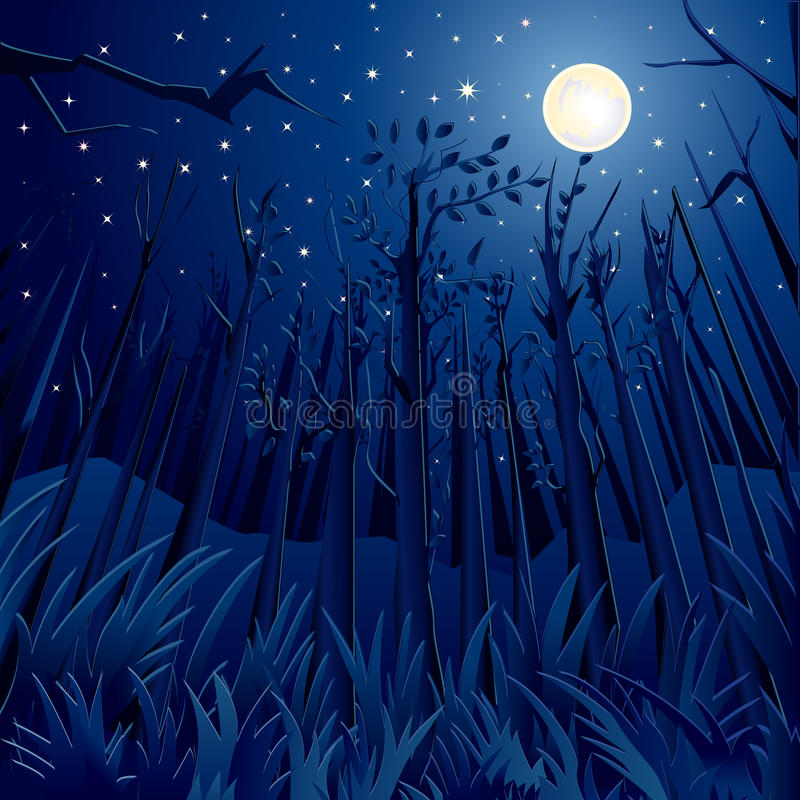 Nachtwildernis royalty-vrije illustratie