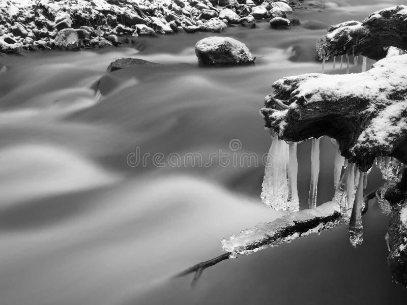 Nachtwinteransicht zu den Eiszapfen auf Zweigen und eisigen Flusssteinen über reißender Fluss. Reflexionen des Scheinwerfers in de stockfotografie