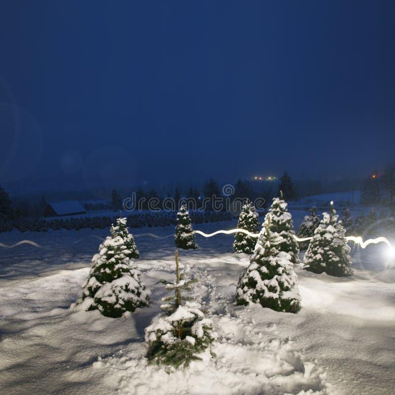 Nachtzeitfoto der schneebedeckten Landschaft stockfotos