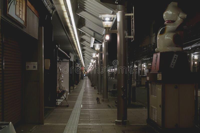 Nachtzeitfoto einer verlassenen Straße mit zugänglichen Computerräumen in Takayama, Japan lizenzfreies stockbild