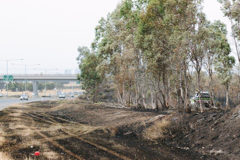 Nachwirkungen der Epping-Bushfires lizenzfreies stockbild