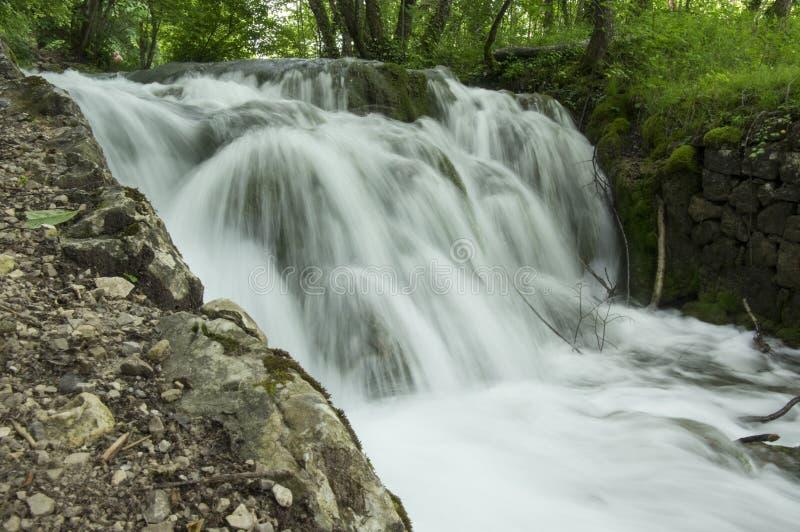 Nacionalni park Plitvicka jezera, wild nature stock photography
