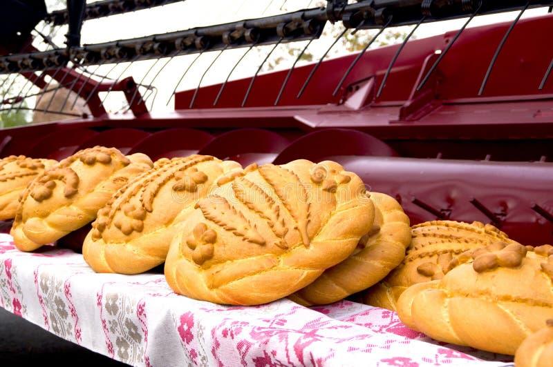 Nacos de pão na ceifeira da ceifeira imagem de stock royalty free