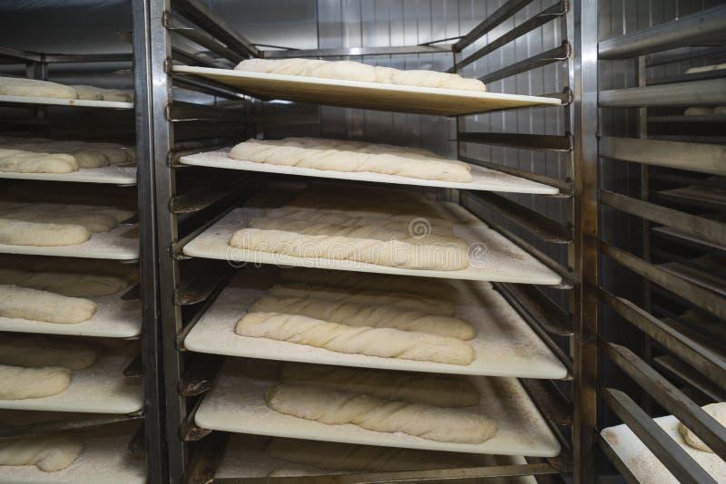 Nacos do pão de Sourdough que esperam o forno imagens de stock royalty free