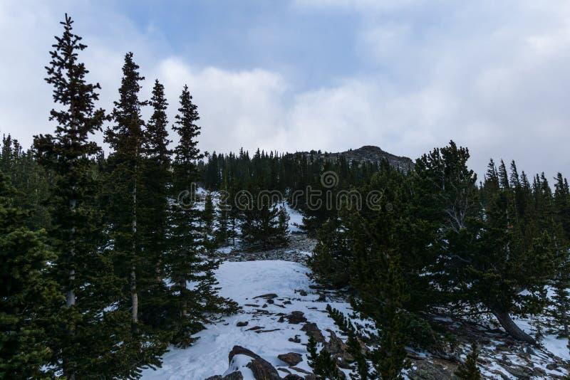 Naczelna góra w Kolorado fotografia royalty free