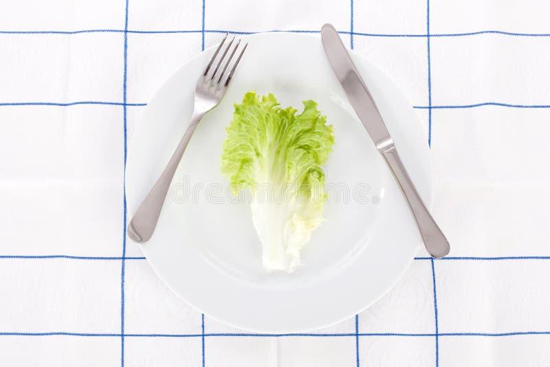 naczynia liść sałata obraz stock