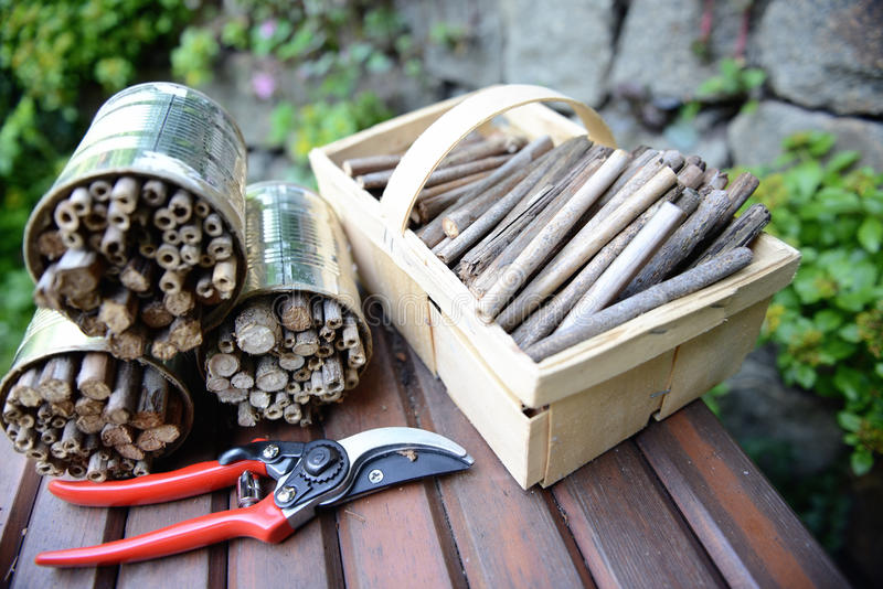 Naczynie dla budować insekta schronienie dla dzikich pszczół na ławce fotografia royalty free
